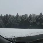 雪は降る・・・